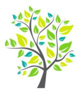 Salveo Integrative Health logo